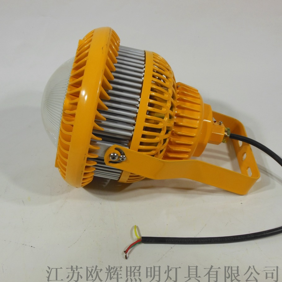 BFC100 黃款 (6).JPG