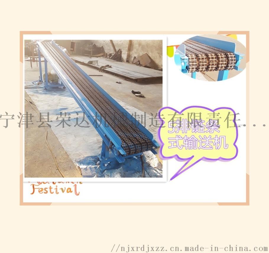 5排链条式输送机4_副本.jpg