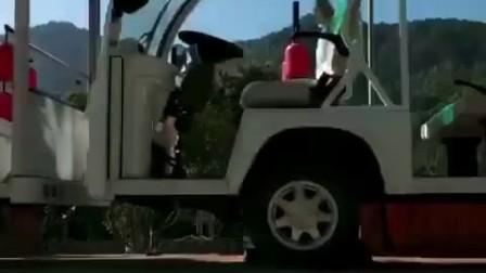 14座全自动燃油观光车