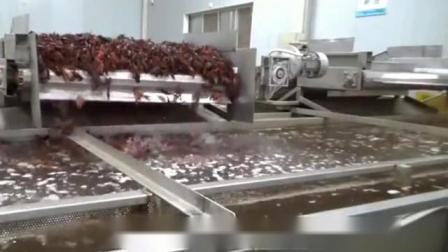 小龙虾加工设备