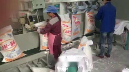 面粉自动包装秤 面粉定量包装机 面粉称重包装机