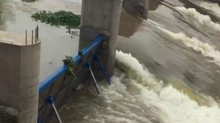 云南生产钢坝翻板闸门