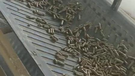 新疆生物质颗粒生产现场视频