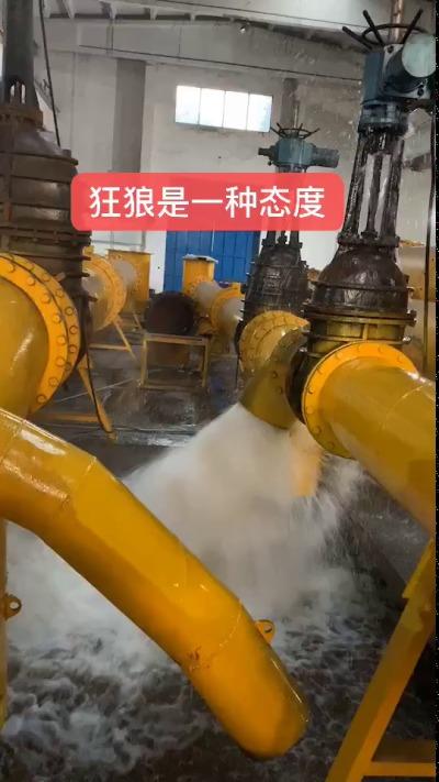 排污泵 青島排污泵 切割式污水泵 污水污物潛水電泵