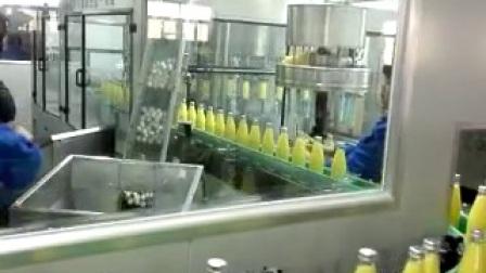 玻璃瓶橙汁生产线