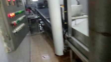 地瓜条上浆裹粉生产线
