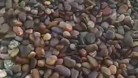 抛光鹅卵石