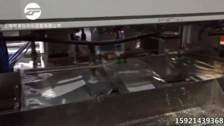 真空整形包装机 栀浦包装机 大米包装机