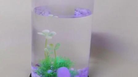 圆形水母缸