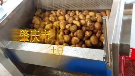 土豆脫皮機生薑清洗機不鏽鋼果蔬洗菜機毛刷去皮機