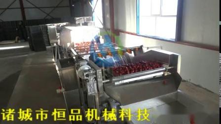 蔬菜水果高压气泡清洗机 大枣清洗烘干流水线设备