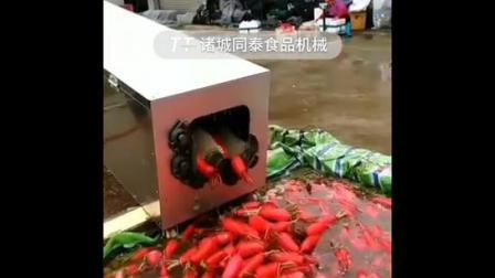 韩国白萝卜清洗机 全自动水果萝卜青萝卜清洗设备