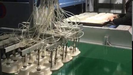 环保餐盒生产