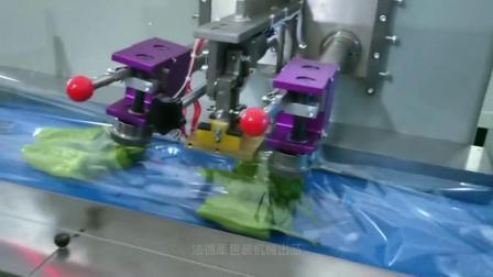 深圳_蔬菜包裝機_蔬菜保鮮打包封口包裝機