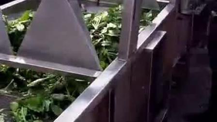 高壓噴淋果蔬清洗機 黃瓜氣泡清洗機