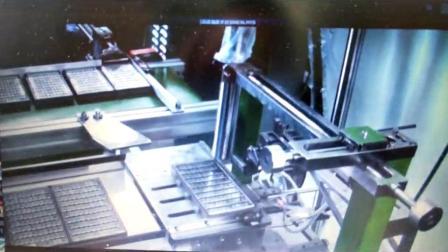 东莞自动化定制厂家供应 全自动喷码机