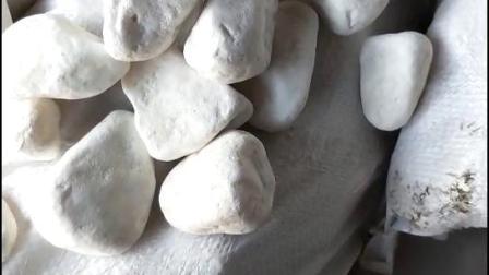 机制白鹅卵石 园林绿化带铺盖白石子 装饰用白色石子