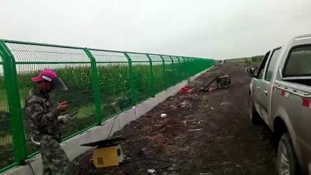 护栏网使用效果