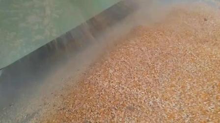 玉米破碎机