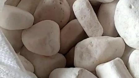 山東白色鵝卵石   永順機制 機製鵝卵石多少錢