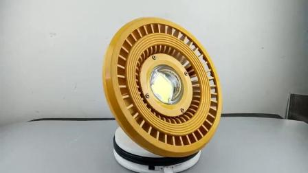 LED免維護防爆燈ZBD101-II
