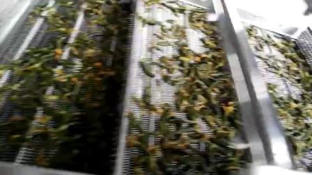 瓜果蔬菜清洗设备