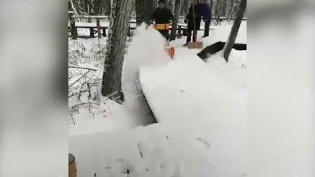多功能剷雪掃雪車 掃雪清雪機 捷克 沙灘掃雪機