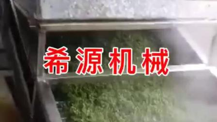 四川鮮花椒加工設備 全自動保鮮花椒清洗殺青生產線