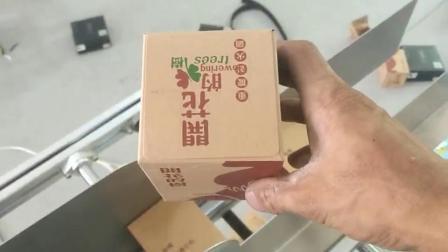 食品封盒机