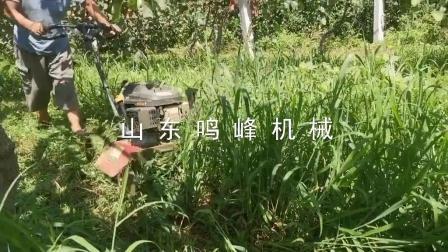 宗申动力小型果园割草机自走式果园碎草机