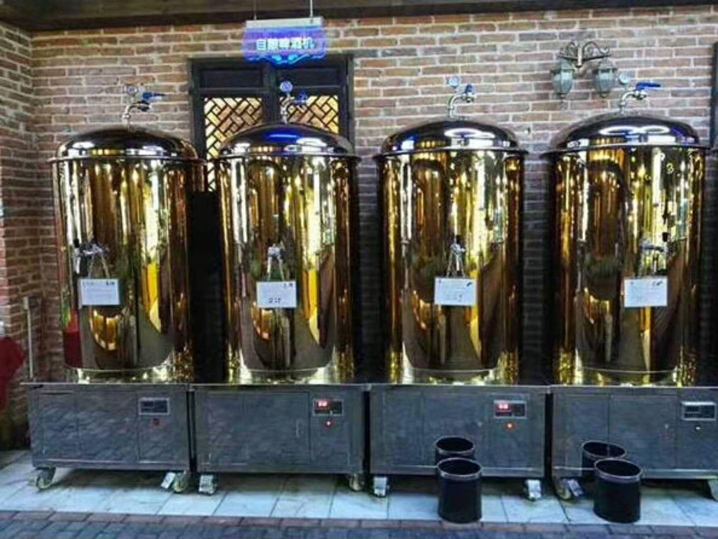 精酿啤酒设备酿造的啤酒贵族饮用法