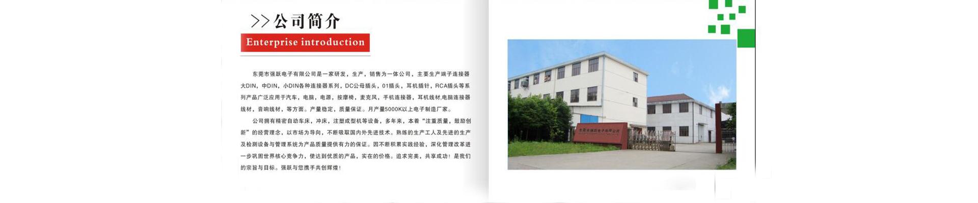 东莞市强跃电子有限公司