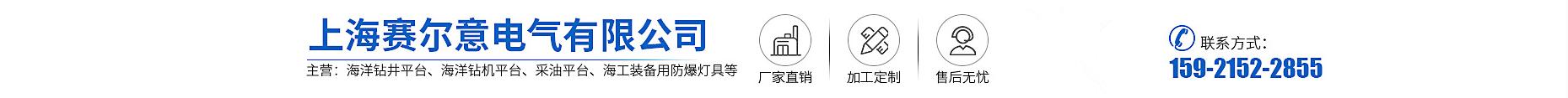 上海賽爾意電氣有限公司