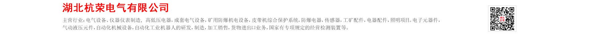 湖北杭榮電氣有限公司