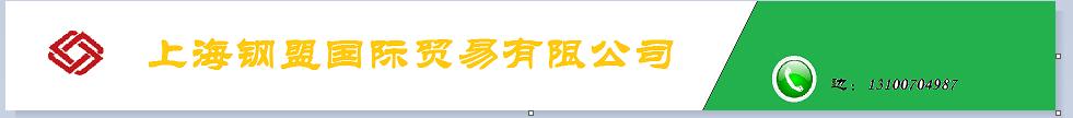上海钢盟国际贸易有限公司