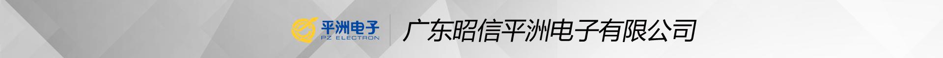 廣東昭信平洲電子有限公司