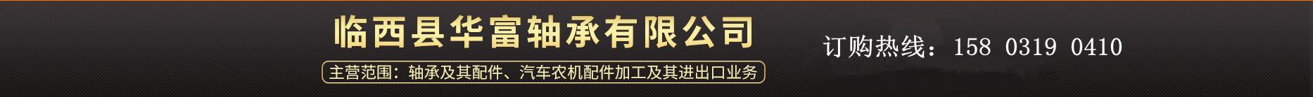 临西县华富轴承有限公司