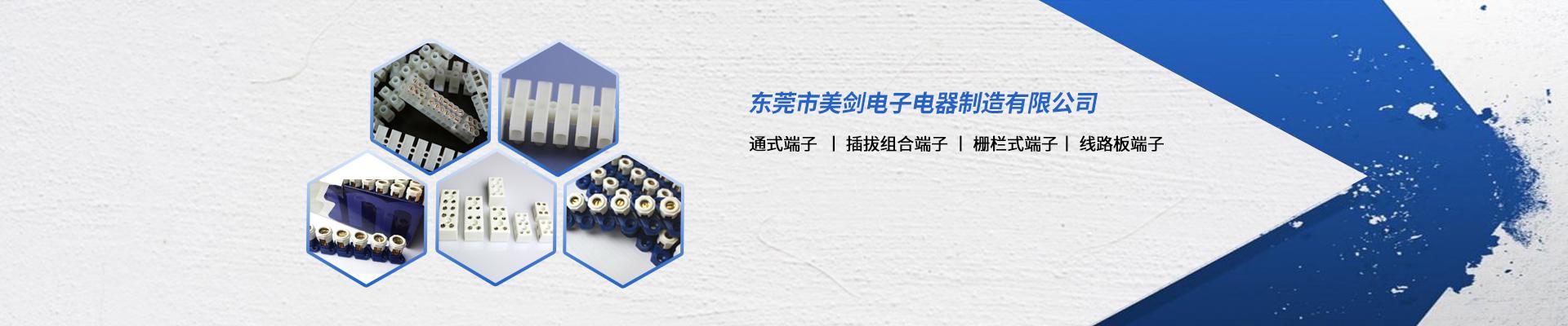 东莞市美剑电子电器制造有限公司