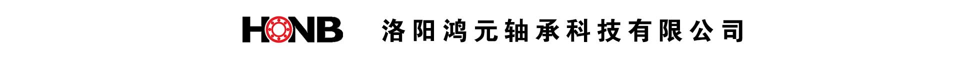 洛陽鴻元軸承科技有限公司