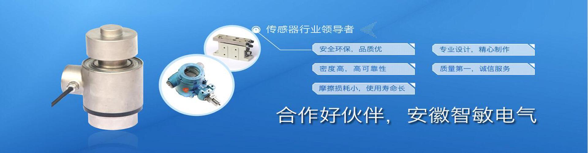 安徽智敏电气技术有限公司