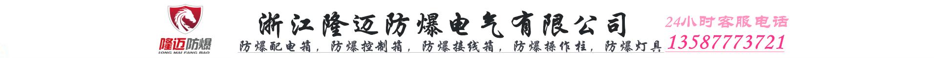 浙江隆邁防爆電氣有限公司