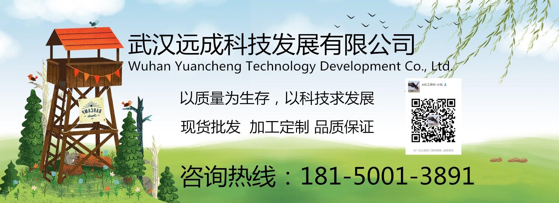 武汉远城科技发展有限公司