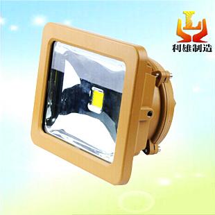 防爆泛光灯,LED泛光灯,LED防爆泛光