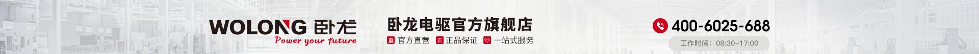 臥龍電氣驅動集團股份有限公司