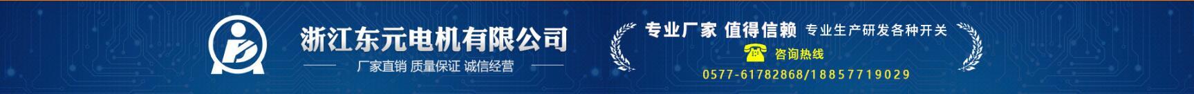 浙江东元电机有限公司