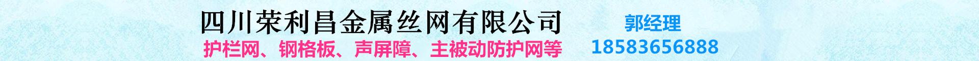 四川荣利昌金属丝网有限公司