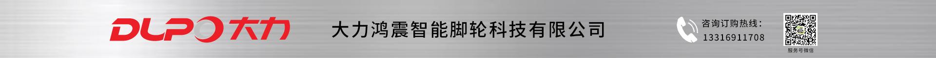 深圳市大力鴻震智慧腳輪科技有限公司