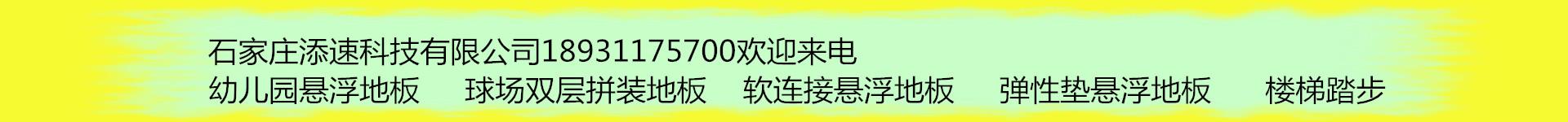 石家庄添速科技有限公司
