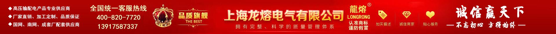 上海龍熔電氣有限公司