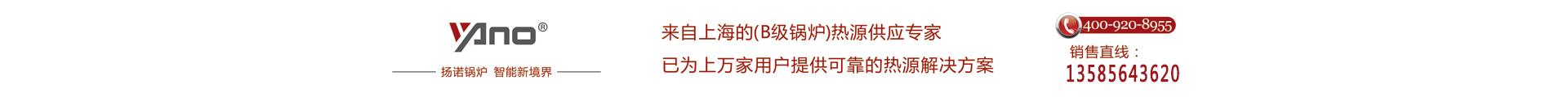 上海揚諾鍋爐製造有限公司
